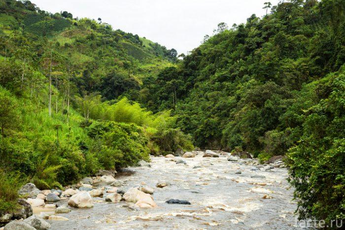 колумбия магдалена