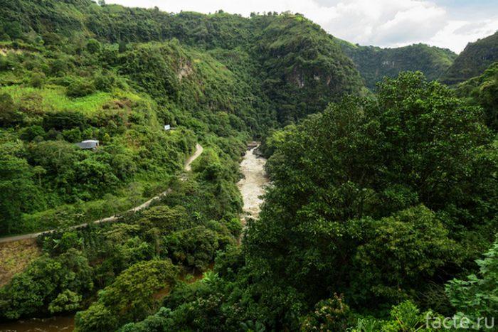 магдалена колумбия