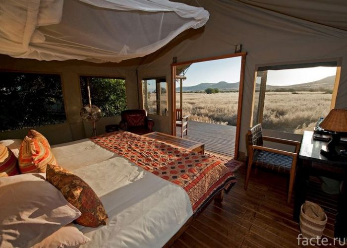 отель в африке