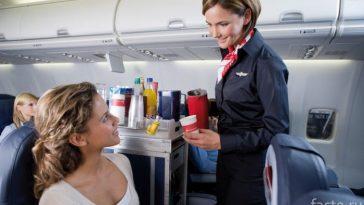 стюардесса обслуживает пассажира