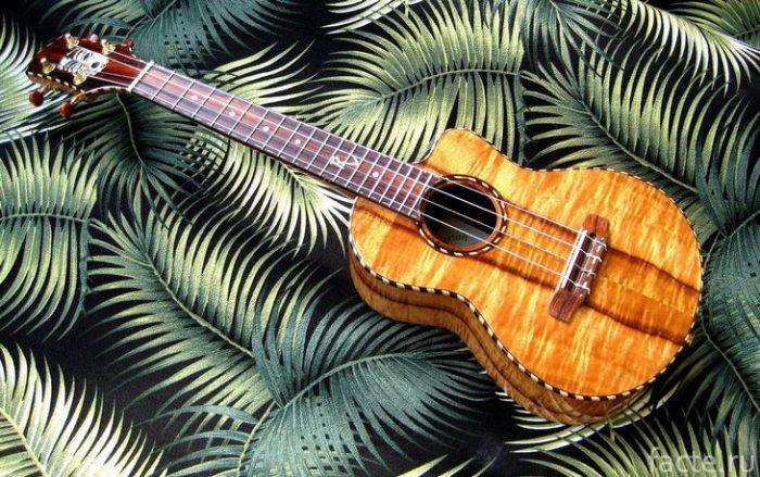 гавайская укулеле