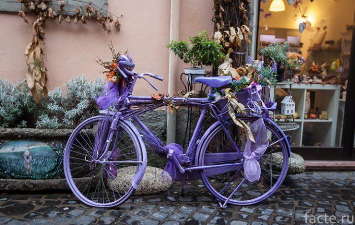 лиловый велосипед