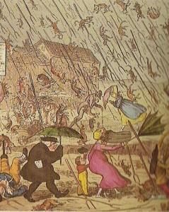 dojd 239x300 Дождь из животных в современности