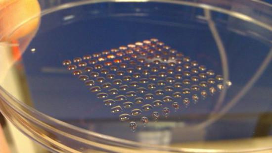Человеческие эмбриональные стволовые клетки можно печатать на 3D принтере