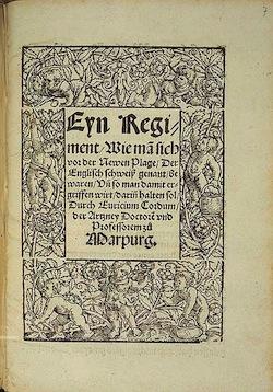 В 16 м веке половина населения Европы умерла от таинственного «Английского пота»