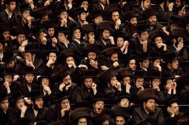 Интересные факты о евреях   о которых не принято говорить