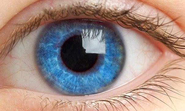 15 фактов о глазах, которые вас поразят