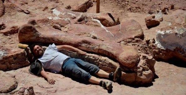 Палеонтологи обнаружили останки самых больших динозавров