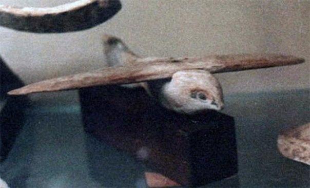 Неразгаданная загадка «Саккарской птицы»