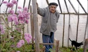 Президент Уругвая Хосе Мухика: без дворца, без кортежей, без глянца